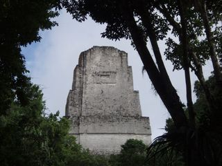 Copy of tikal2